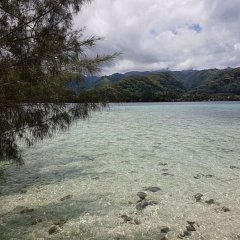 Отель Motu Mapeti - Tahiti Private Island фото 2