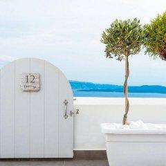 Отель Santorini Secret Suites & Spa с домашними животными