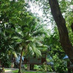 Отель Koh Tao Garden Resort фото 6