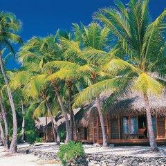 Отель Tikehau Pearl Beach Resort пляж