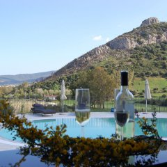 Отель Nioleo Turismo Rurale Италия, Синискола - отзывы, цены и фото номеров - забронировать отель Nioleo Turismo Rurale онлайн бассейн