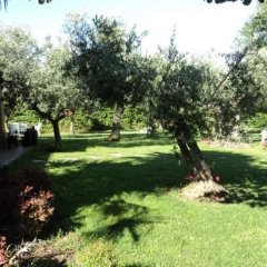 Отель Agriturismo Villa Vetiche Италия, Рокка-Сан-Джованни - отзывы, цены и фото номеров - забронировать отель Agriturismo Villa Vetiche онлайн фото 6