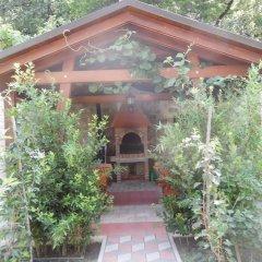 Отель Maini Черногория, Будва - отзывы, цены и фото номеров - забронировать отель Maini онлайн развлечения