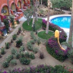 Отель Mar de Cortez Мексика, Кабо-Сан-Лукас - отзывы, цены и фото номеров - забронировать отель Mar de Cortez онлайн фото 6