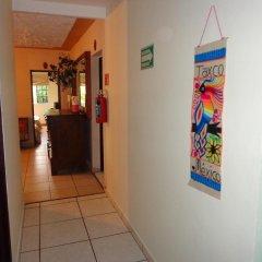 Hostel Bedsntravel Гвадалахара интерьер отеля фото 2