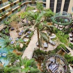 Отель Embassy Suites by Hilton Minneapolis Airport США, Блумингтон - отзывы, цены и фото номеров - забронировать отель Embassy Suites by Hilton Minneapolis Airport онлайн балкон
