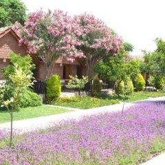 Can Garden Beach Турция, Сиде - отзывы, цены и фото номеров - забронировать отель Can Garden Beach онлайн фото 8