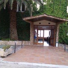 Отель Grecs Испания, Курорт Росес - отзывы, цены и фото номеров - забронировать отель Grecs онлайн фото 3