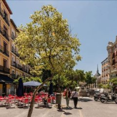Апартаменты Cozy Apartment Plaza Mayor