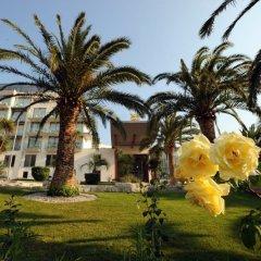 Отель Queen Of Montenegro Рафаиловичи