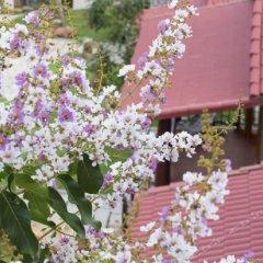 Отель Hong Bin Bungalow фото 5
