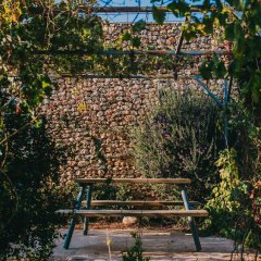 Отель Tur Sinai Organic Farm Resort Иерусалим фото 10