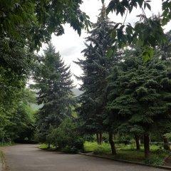 Отель Vanadzor Armenia Health Resort Дзорагет фото 13