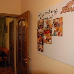 The Red Cat Hostel интерьер отеля фото 3