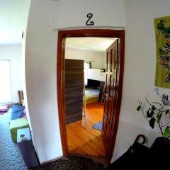 Отель Funky Monkey Hostel Болгария, Пловдив - отзывы, цены и фото номеров - забронировать отель Funky Monkey Hostel онлайн комната для гостей фото 3