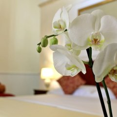 Отель Dimora Le Tre Muse Guesthouse Италия, Лечче - отзывы, цены и фото номеров - забронировать отель Dimora Le Tre Muse Guesthouse онлайн комната для гостей фото 5
