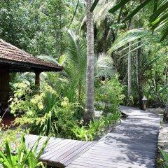 Отель Gangehi Island Resort фото 7