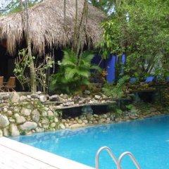 Отель Comfort Inn Palenque Maya Tucán фото 9