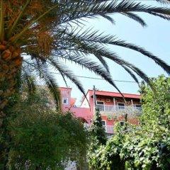 Отель Evi-Ariti Apartments Греция, Корфу - отзывы, цены и фото номеров - забронировать отель Evi-Ariti Apartments онлайн фото 6
