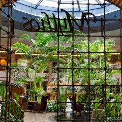 Gloria Serenity Resort Турция, Белек - 3 отзыва об отеле, цены и фото номеров - забронировать отель Gloria Serenity Resort - All Inclusive онлайн интерьер отеля
