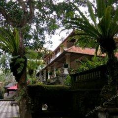 Отель Arma Museum & Resort фото 12
