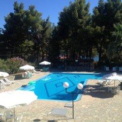Отель Maria's House бассейн
