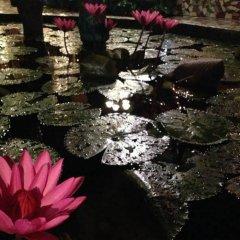Отель The Lotus Garden Hotel Филиппины, Пуэрто-Принцеса - отзывы, цены и фото номеров - забронировать отель The Lotus Garden Hotel онлайн фото 3