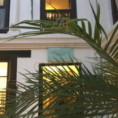 Отель 3 Rooms by Pauline Непал, Катманду - отзывы, цены и фото номеров - забронировать отель 3 Rooms by Pauline онлайн фото 17