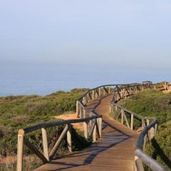 Отель Camping-Bungalows El Faro Испания, Кониль-де-ла-Фронтера - отзывы, цены и фото номеров - забронировать отель Camping-Bungalows El Faro онлайн приотельная территория