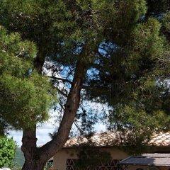 Отель il cardino Италия, Сан-Джиминьяно - отзывы, цены и фото номеров - забронировать отель il cardino онлайн фото 3