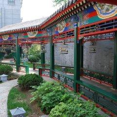Отель Soluxe Courtyard Китай, Пекин - отзывы, цены и фото номеров - забронировать отель Soluxe Courtyard онлайн фото 5
