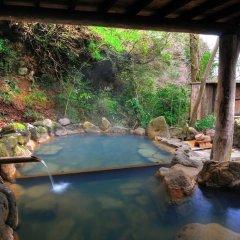 Отель Ryukeien Минамиогуни бассейн