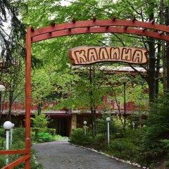 Отель Kalina Hotel Болгария, Боровец - отзывы, цены и фото номеров - забронировать отель Kalina Hotel онлайн фото 4