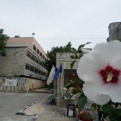Отель Olimpia Supersnab Hotel Болгария, Балчик - отзывы, цены и фото номеров - забронировать отель Olimpia Supersnab Hotel онлайн фото 8