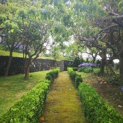 Отель Quinta das Camelias Понта-Делгада фото 4