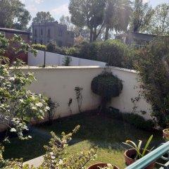 Отель Pepper My Love Мексика, Мехико - отзывы, цены и фото номеров - забронировать отель Pepper My Love онлайн фото 10