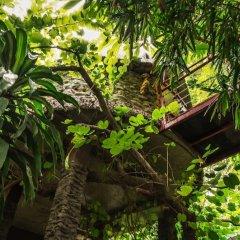 Отель Dao Anh Khanh Treehouse Ханой фото 11