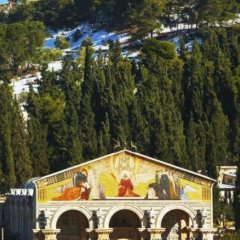 Mount Of Olives Hotel Израиль, Иерусалим - 4 отзыва об отеле, цены и фото номеров - забронировать отель Mount Of Olives Hotel онлайн фото 2