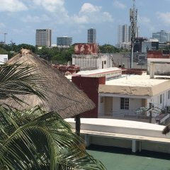 Отель Crisantemos Suite Мексика, Канкун - отзывы, цены и фото номеров - забронировать отель Crisantemos Suite онлайн фото 3