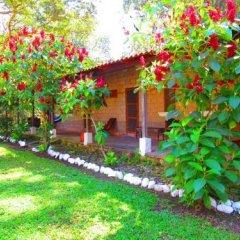 Отель El Bosque Hotel Гондурас, Копан-Руинас - отзывы, цены и фото номеров - забронировать отель El Bosque Hotel онлайн фото 17