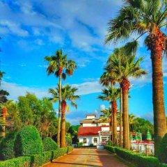Отель Tropikal Resort Албания, Дуррес - отзывы, цены и фото номеров - забронировать отель Tropikal Resort онлайн фото 10
