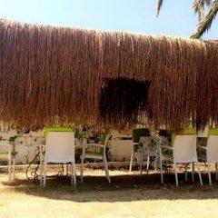Palmiye Pansiyon Турция, Карабурун - отзывы, цены и фото номеров - забронировать отель Palmiye Pansiyon онлайн пляж