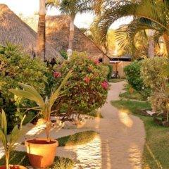 Отель Village Temanuata Французская Полинезия, Бора-Бора - отзывы, цены и фото номеров - забронировать отель Village Temanuata онлайн фото 20