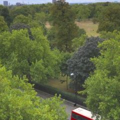 Отель Thistle Kensington Gardens Великобритания, Лондон - отзывы, цены и фото номеров - забронировать отель Thistle Kensington Gardens онлайн фото 5