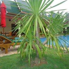 Отель Villa Angelica Phuket - Baan Malinee бассейн фото 2