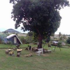 Отель The Beehive Fiji фото 21