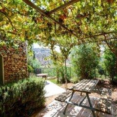 Отель Tur Sinai Organic Farm Resort Иерусалим фото 3