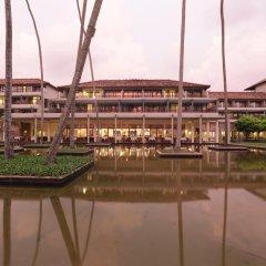 Отель The Blue Water Шри-Ланка, Ваддува - отзывы, цены и фото номеров - забронировать отель The Blue Water онлайн приотельная территория