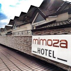 Mimoza Hotel Турция, Олудениз - отзывы, цены и фото номеров - забронировать отель Mimoza Hotel онлайн городской автобус