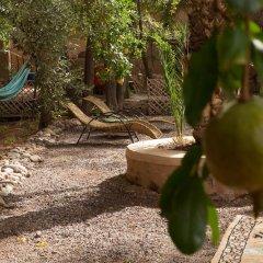 Отель Ecolodge - La Palmeraie Марокко, Уарзазат - отзывы, цены и фото номеров - забронировать отель Ecolodge - La Palmeraie онлайн приотельная территория фото 2